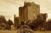 For Sale: Charming Historic Irish Castle, Co. Offaly