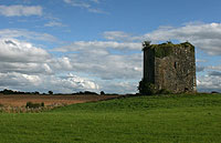 Castle For Sale: Ballymaquiff Castle, near Labane, Ardrahan, Co. Galway