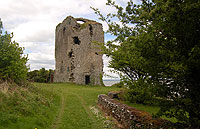 Period Property For Sale - Beagh Castle, Ballysteen, Co. Limerick