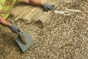 Thatching In Ireland Advice And Information Formerglory Ie