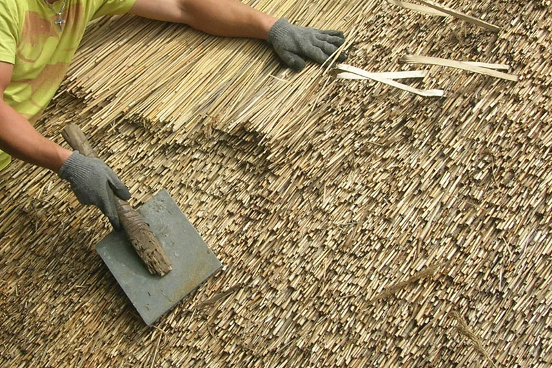 Thatching FAQs