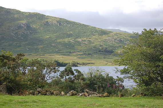 Lakeshore Farmhouse For Sale: Bohaun, Cloughbrack, Co. Galway