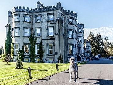 Bed & Breakfast at Ballyseede Castle, Tralee, Co. Kerry