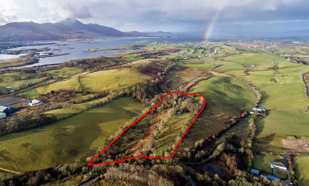Period Residence For Sale: Barley Hill House, Barley Hill, Westport, Co. Mayo