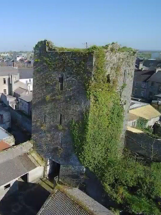 Castle For Sale: Black Castle, Thurles, Co. Tipperary
