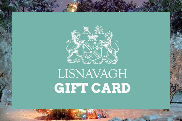 Christmas Gift Ideas - Lisnavagh