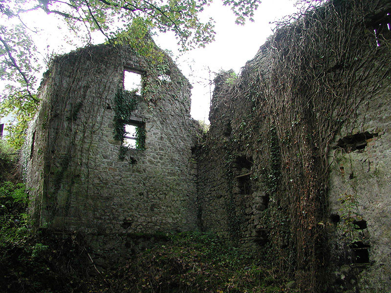 Former Mill For Sale: Ballinacarrig Mill, Ballynacarrig, Ballyboy, Co. Offaly