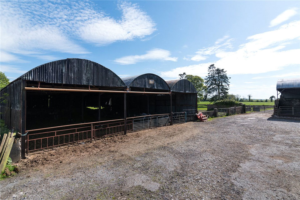 Country Home For Sale: Oldtown House & Lands, Ardagh, Co. Longford