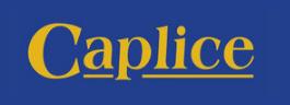 Caplice Auctioneers