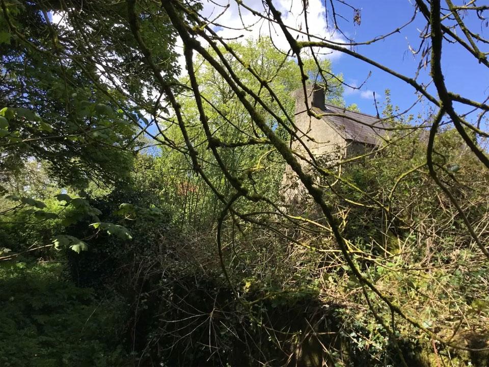 Traditional Style Farmhouse For Sale: Ballybane House, Granlahan, Ballinlough, Co. Roscommon